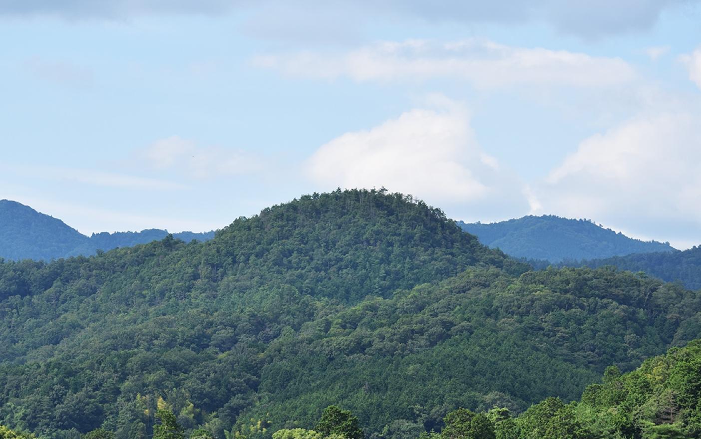 上賀茂神社から見た神山